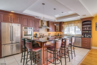 Berkeley Heights Twp. Single Family Home For Sale: 91 Hamilton Ave