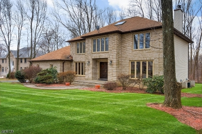 Randolph Twp. Single Family Home For Sale: 7 Judy Resnik Dr