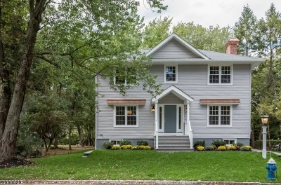 New Providence Boro Single Family Home For Sale: 41 Fairview Ave
