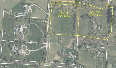 Mendham Boro NJ Residential Lots & Land For Sale: $1,495,000