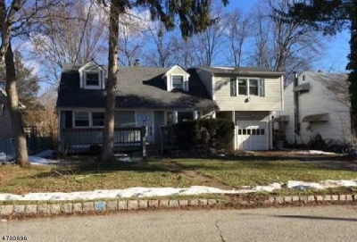 Parsippany Single Family Home For Sale: 26 Chesapeake Ave