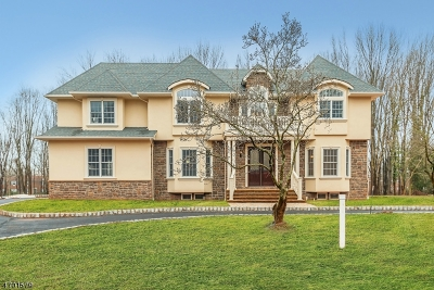 Scotch Plains Twp. Single Family Home For Sale: 6 Fairway Ct
