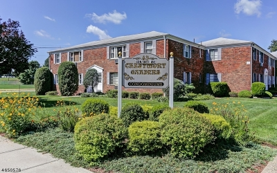 West Orange Twp. Condo/Townhouse For Sale: 43 Conforti Ave #41