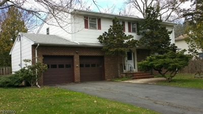 Piscataway Twp. Single Family Home For Sale: 42 Ross Hall Blvd S