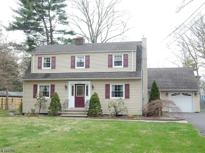 Scotch Plains Twp. Single Family Home For Sale: 1510 Terrill Rd