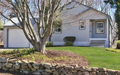 Bernardsville Boro Single Family Home For Sale: 5 Old Army Rd