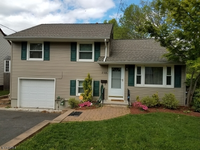 Rahway City Single Family Home For Sale: 218 Madison Ave