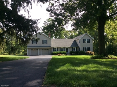 Bernards Twp. Single Family Home For Sale: 20 Galloping Hill Rd