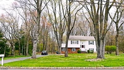 Bernards Twp. Single Family Home For Sale: 19 Gerard Ave