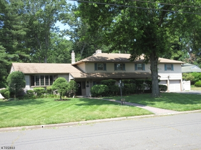 Edison Twp. Single Family Home For Sale