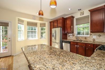 Bernards Twp. Single Family Home For Sale: 28 Hansom Rd