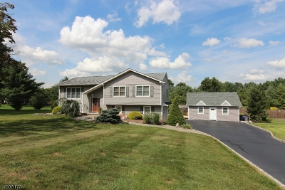 Bridgewater Twp. Single Family Home For Sale: 685 Meadow Rd