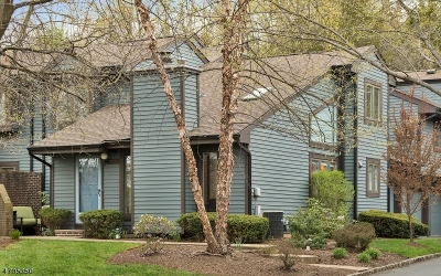 Bernards Twp. Condo/Townhouse For Sale: 76 Aspen Dr