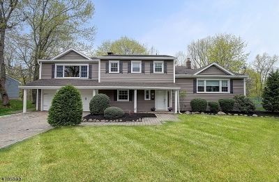 Livingston Twp. Single Family Home For Sale: 51 Knollwood Dr
