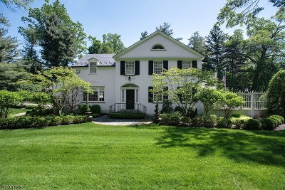 Essex County, Morris County, Union County Single Family Home For Sale: 92 Lake Rd