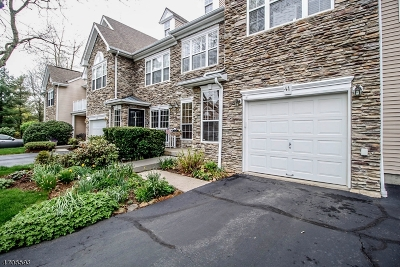 Bernards Twp. Condo/Townhouse For Sale: 41 Musket Dr