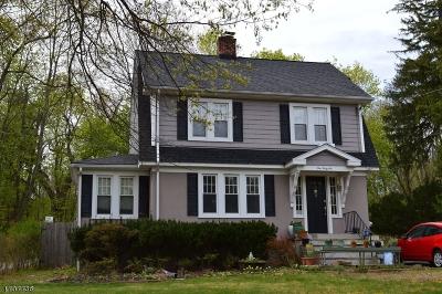Madison Boro Single Family Home For Sale: 146 Central Avenue