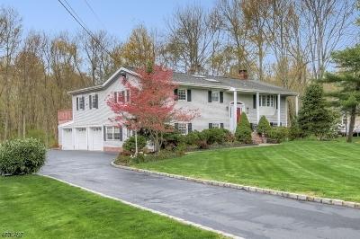 Bernards Twp. Single Family Home For Sale: 44 Lurline Dr
