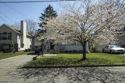 Livingston Twp. Single Family Home For Sale: 9 Dougal Ave
