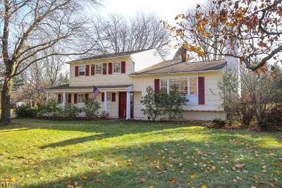 Bernards Twp. Single Family Home For Sale: 61 Fairview Dr E