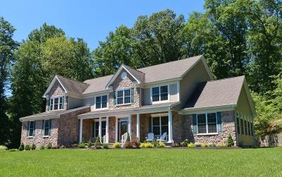 Randolph Twp. Single Family Home For Sale: 5 Poplar Ct