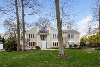 Berkeley Heights Twp. Single Family Home For Sale: 65 Grassman Pl