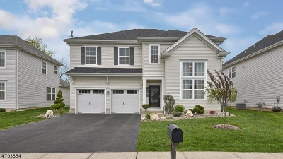 Piscataway Twp. Single Family Home For Sale: 7 Lily Ln