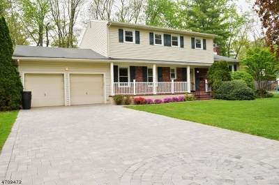 New Providence Boro Single Family Home For Sale: 55 Woodcrest Dr