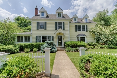 Madison Boro Single Family Home For Sale: 161 Green Village Rd