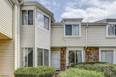 North Brunswick Twp. Condo/Townhouse For Sale: 1159 Schmidt Ln