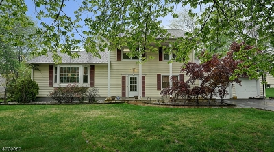 Parsippany-Troy Hills Twp. Single Family Home For Sale: 11 Hidden Glen Dr