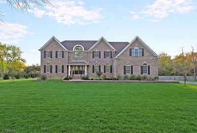 Bedminster Twp. Single Family Home For Sale: 130 Somerset Ter