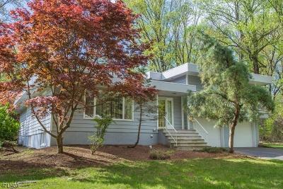 Chester Boro Single Family Home For Sale: 25 Cherry Tree Ln