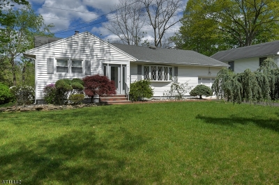 Piscataway Twp. Single Family Home For Sale: 24 Lake Park Dr