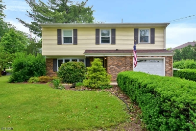 Edison Twp. Single Family Home For Sale: 211 Central Ave