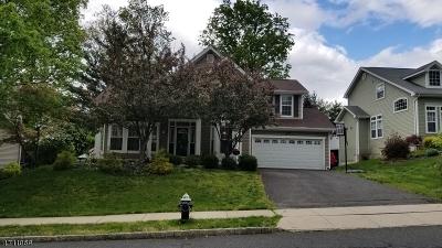 Bernards Twp. Single Family Home For Sale: 193 Smoke Rise Rd