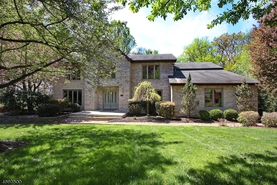 Randolph Twp. Single Family Home For Sale: 19 Judy Resnik Dr