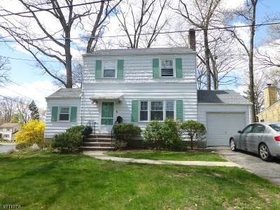 Livingston Twp. Single Family Home For Sale: 6 Salem Pl