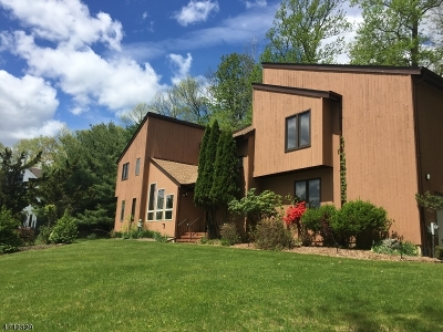 Randolph Twp. Single Family Home For Sale: 6 Colonial Ct