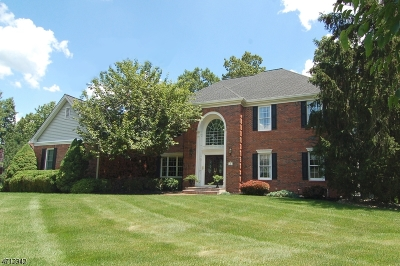 Bridgewater Twp. Single Family Home For Sale: 30 Totten Drive