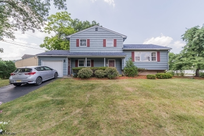 Edison Twp. Single Family Home For Sale: 24 Whitehall Ave