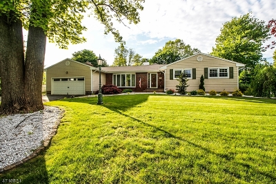 North Brunswick Twp. Single Family Home For Sale: 1 Rustic Dr