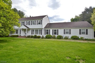 Bedminster Twp. Single Family Home For Sale: 7 Southfield Drive