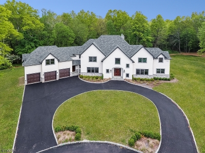 Montville Twp. Single Family Home For Sale: 12 Meadow Ct