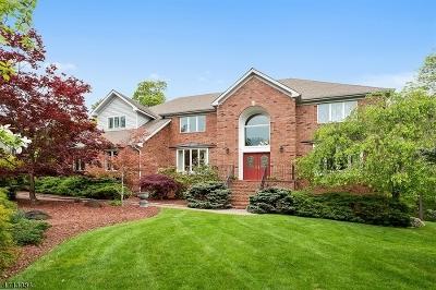 Bridgewater Twp. Single Family Home For Sale: 25 McDowell Ct