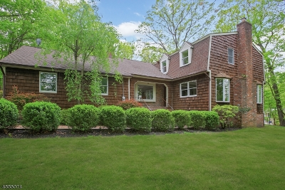 Warren Twp. Single Family Home For Sale: 28 Christy Dr