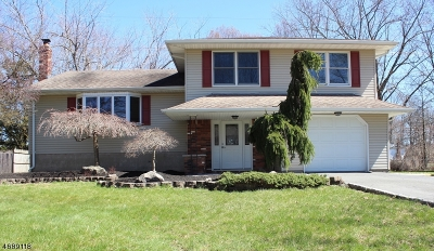 Parsippany Single Family Home For Sale: 18 Arnold Drive