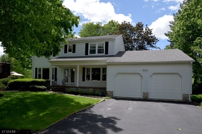 South Brunswick Twp. Single Family Home For Sale: 29 Eastern Dr