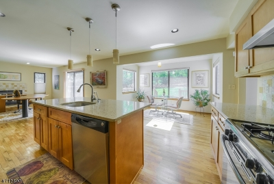 Warren Twp. Single Family Home For Sale: 42 Highmount Ave