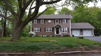 Berkeley Heights Twp. Single Family Home For Sale: 32 Cedar Green Ln